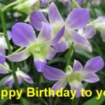 Free Happy Flower Birthday Card